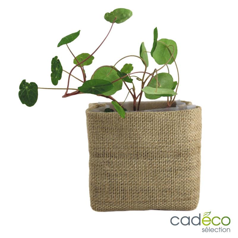 Kit de plantation COCO JUTE