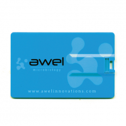 Clé USB QUADRI CARD RUSH 2Go