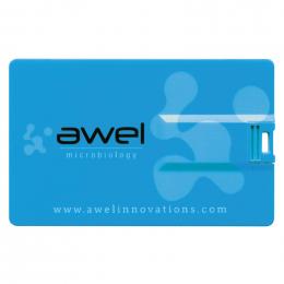 Clé USB QUADRI CARD 4Go délai express